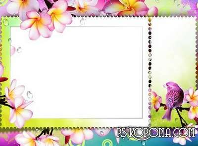Photo frame - The arrival of spring