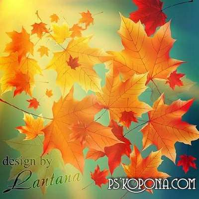 Multi-layer PSD source for design in Photoshop - Swirling autumn leaves