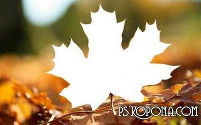 PSD Frame for female photos - Autumn leaf calendar
