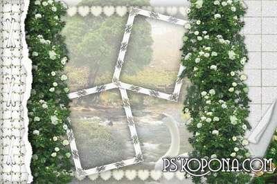Framework for a photo-wedding album template