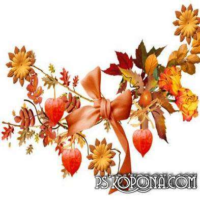 Collection PNG clipart for photo design the composition of a variety of flowers and yellow autumn leaves