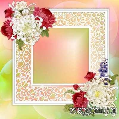 Chrysanthemum PSD source - frame and autumn chrysanthemums for photo design