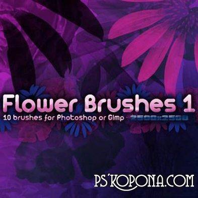 6 Flower Photoshop Brushes