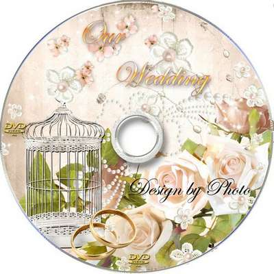 Free Wedding cover and blowing-into DVD - Our happiness
