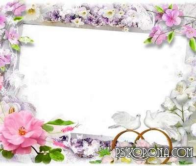 Frames -Wedding Swans