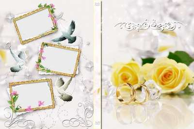 Free Wedding cover for DVD, blowing-on disk -  We wish happiness!