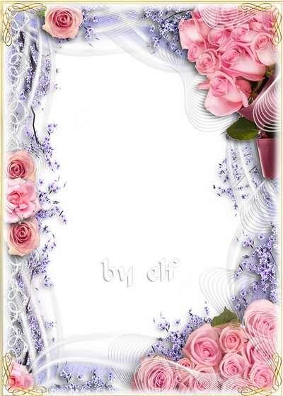 Floral frame for Photoshop