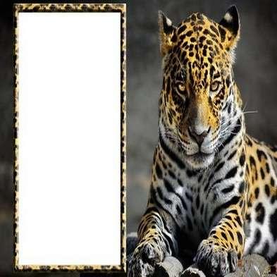 Free photo frame psd with Elegant leopard
