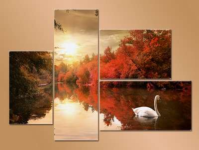 Photoshop template psd pattern of the modules with white swan on a pond
