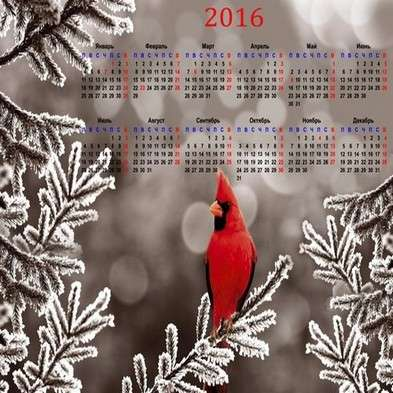 Free 2016 calendar template psd with a beautiful bird