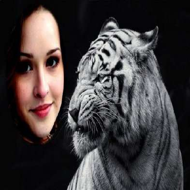 Free Photo frame psd for female photos with a white tiger