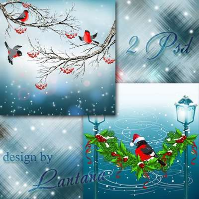 Free Multi-layer PSD template winter bullfinches on the branch - Free download