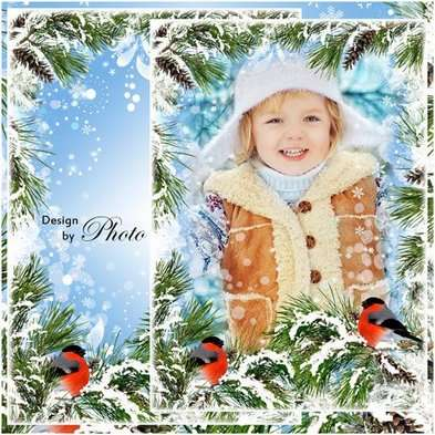 Winter frame psd template bullfinch in winter forest - Free download