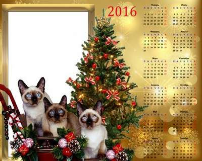 Calendar-frame psd for 2016 – Three gifts