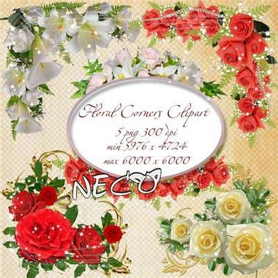 Floral Corners Clipart PNG