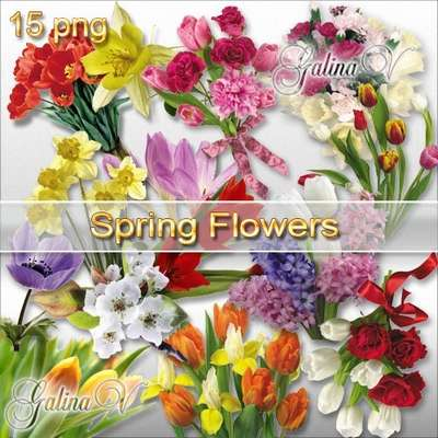 Flowers PNG download - Spring Bouquets Tulips free 15 png images