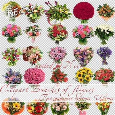 Celebratory bouquets download - free Flowers 25 png images