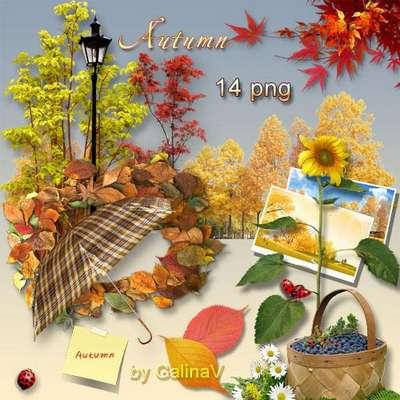 Autumn clipart PNG