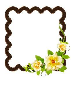 Wooden 4 PNG photo frames-cutouts with flowers for photoshop