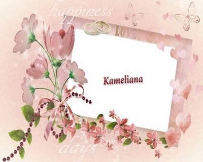 Wedding season from Kameliana-frame №7 - Happiness  days