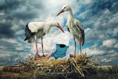 Free Children's photoshop template - psd suit - small child in a nest with two storks
