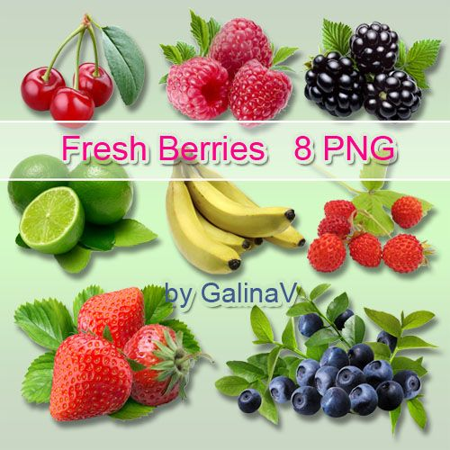 Berries and Fruit PNG free download from google drive
