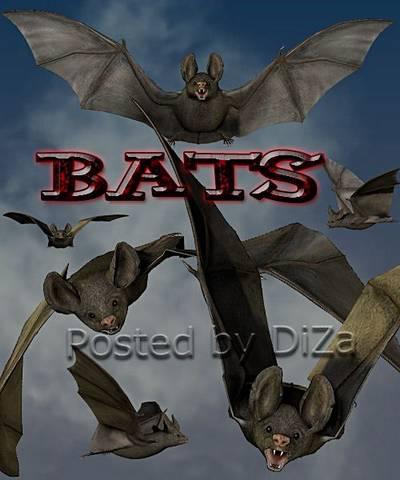 Bats 23 png files