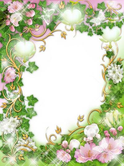 Frames - Apple trees in bloom - spring's creation