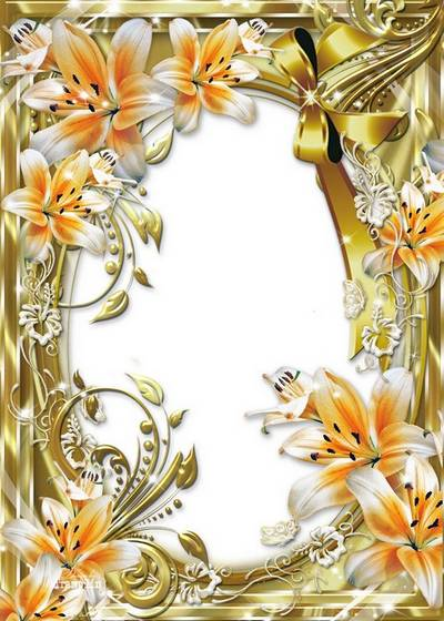 Flower frames for a photo – Leaves and stalks is full of beauty