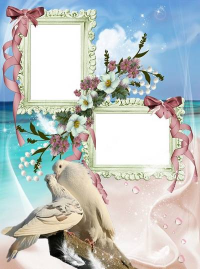 Wedding frame - Honey dove