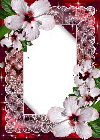 Photo Frame - hibiscus flowers