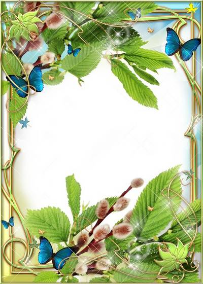 Photo Frame - Willow and Butterflies