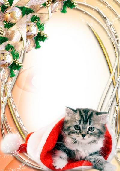 Photo Frame - New Year with a kitten