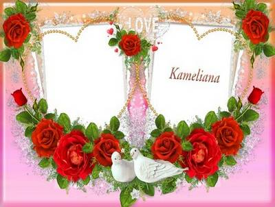 Wedding season from Kameliana - Wedding frame png template Red Roses -  number 1