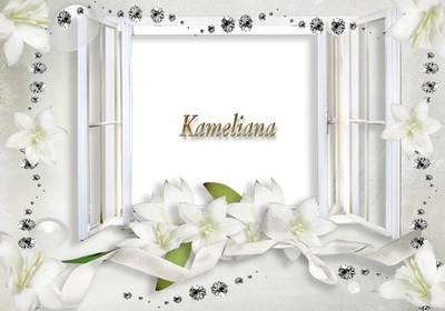 "Wedding season from Kameliana - Wedding photo Frame png template № 4 ""White Lilies"""