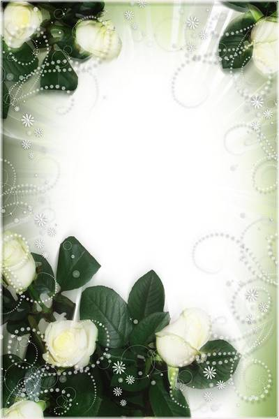 Flower PSD Frame for Photoshop - Dance of White Roses