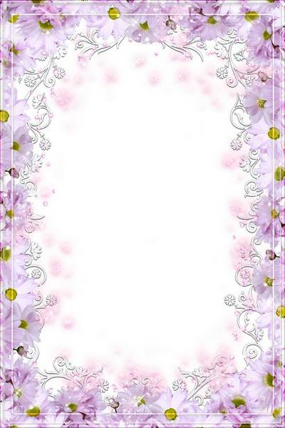 PSD Frame for Photoshop - Magenta Flowers, Gentle Flavor