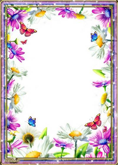 Floral frame PSD for a photo - Bewitching perfection of camomiles