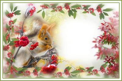 Collage frame for Photoshop - Squirrel in Rowan