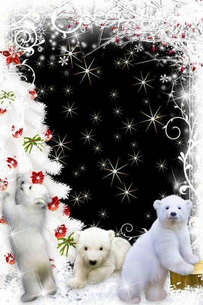 Animal photo frame free download - White bears
