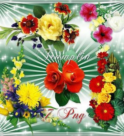Flowers in Png download - Florals excellent quality 7 Png images