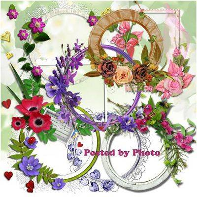 Free Pack: 25 frames png cutouts flowers