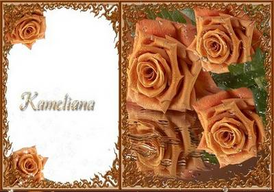 Photo png frame a series of coffee rose, № 2