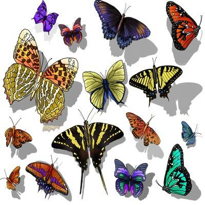 PNG Clipart for Photoshop - Butterfly 133 PNG files
