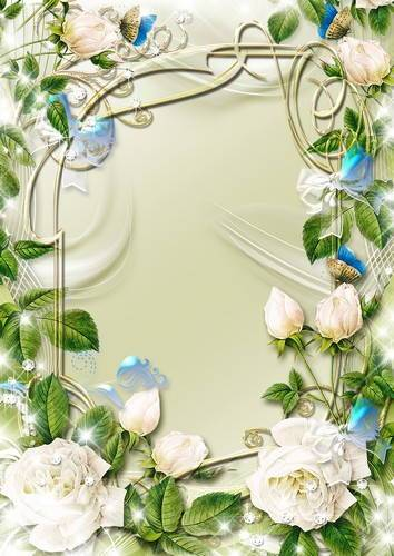 Collection of spring flower frames - tulips, snowdrops, white roses