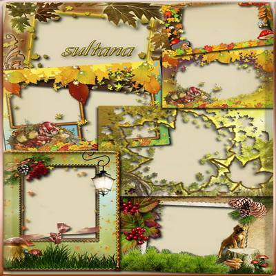 Collection of autumn frames - Golden leaves whirl, this fall we received