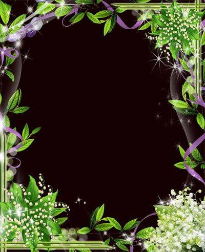 Photoshop frame psd template with Lily flower