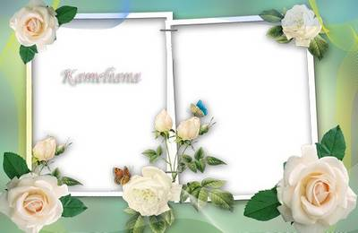 The frame for processing the photo - in beige roses