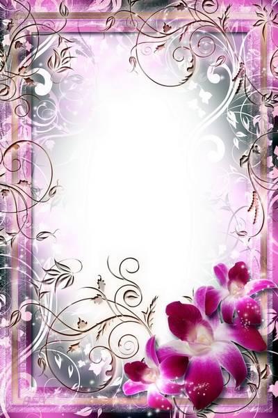 Flower Frame - Light Of Orchids