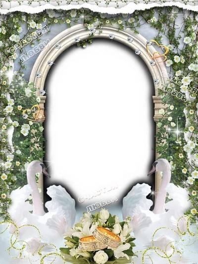 Set of wedding frames for photos